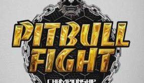 Pitbull Fight Championship 55 acontece neste sábado em Castanhal