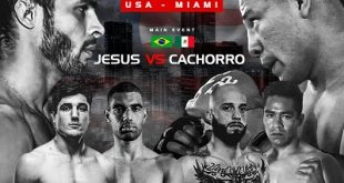 SFT confirma edição em Miami (EUA) com Vinicius de Jesus x Nayib 'Cachorro Loco' na luta principal e mais feras em ação